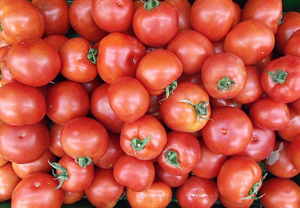 西红柿/斤