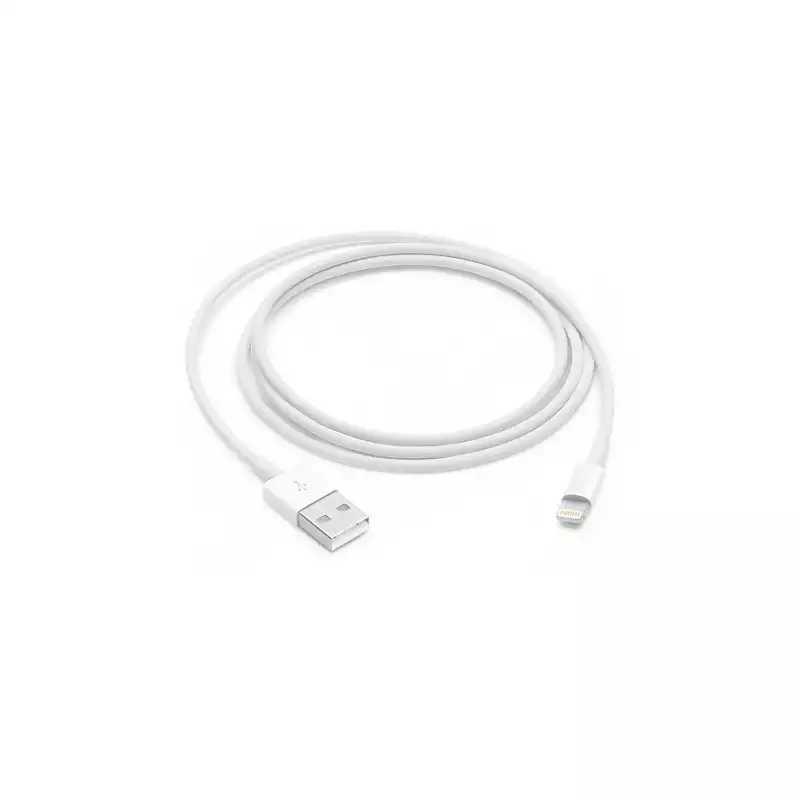 Apple/苹果 Lightning to USB 连接线 (2 米)
