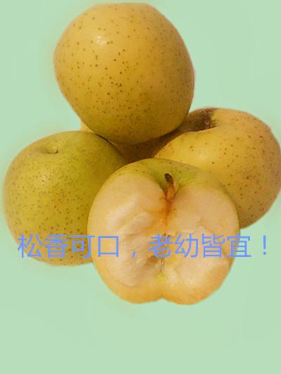 王林苹果 小个香甜口感好